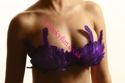 Feather Bra - Purple